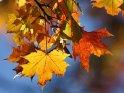 Einen schönen 23. Oktober