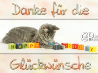 Danke Fur Die Lieben Gluckwunsche Danke Spruch Geburtstag