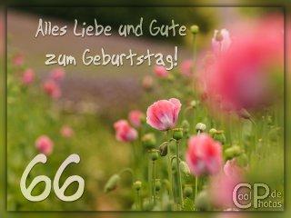 Geburtstagsdeko Set Mit Luftballons Happy Birthday Glamour Zum 66