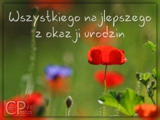Polnisch zurück liebe grüße Grüße auf